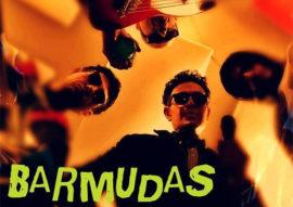 barmudas - wip terranuova