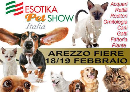 esotika per show - arezzo fiere