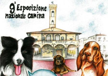esposizione nazionale canina - san giovanni valdarno