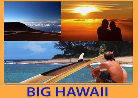 big hawaii - bocciodromo arezzo