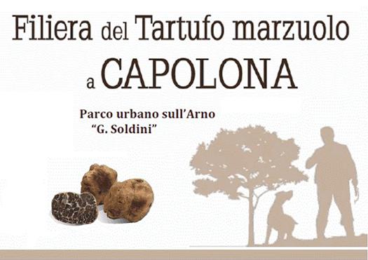 filiera tartufo marzuolo - capolona