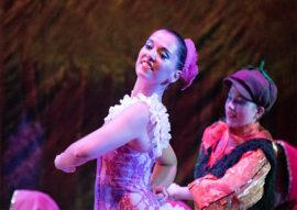 le avventure di cipollino - danz'art