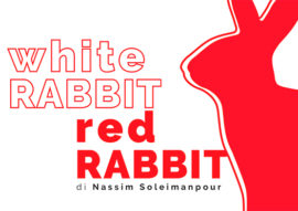white rabbit red rabbit - teatro verdi monte san savino