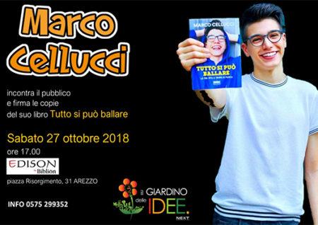 marco cellucci - arezzo