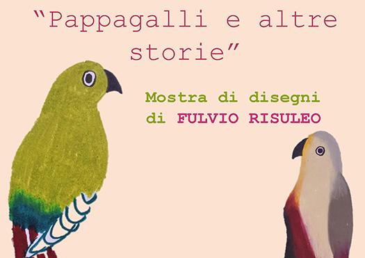 pappagalli e altre storie - arezzo